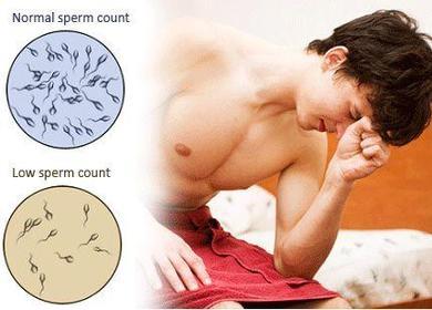 low-sperm